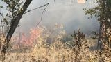 Brush fire closes I-5 southbound in Eugene
