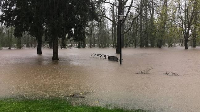 The Nation Weather Service has issued several flood warnings in Oregon, including in Douglas County, Lane County, Linn County, and...
